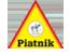 """""""Piatnik"""""""
