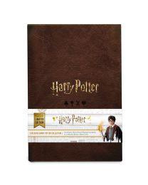 Harry Potter collectie speelkaarten Cartamundi
