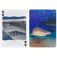 Bicycle haaien speelkaarten