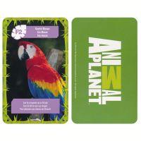 Jungle kaarten